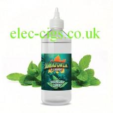 image shows a large bottle of Amazonia 500 ML E-Liquid Double Mint