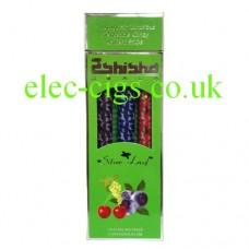 Silver Leaf E-Shisha 500 Puff Fruit Mix Multipack