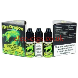 Dragon Warrior 30 ML E-Juice by Fire Dragon in its bottle on plain white background